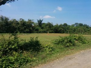 Jual Tanah di Caringin Bogor SHM Akses Tol Cisuka Caringin
