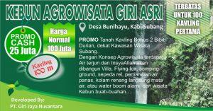 Lantaburro Subang Kebun Agrowisata Giri Asri Subang