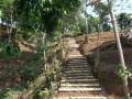 Kebun Agrowisata Giri Asri Subang Kavling Lantaburro Subang