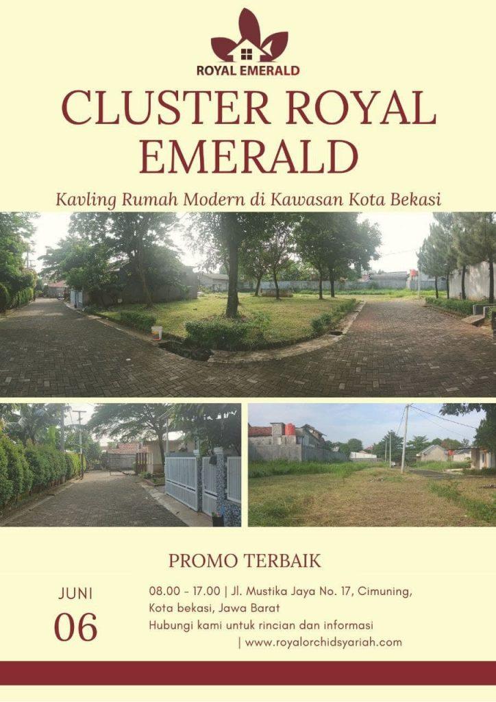 Royal Emerald Cimuning